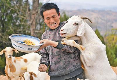 公益人物:羊倌的脱贫路